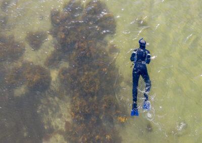 Øhavsmuseet Snorkeltur til stenalderen L
