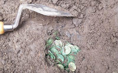 Kæmpe vikingeskat fundet på Fyn